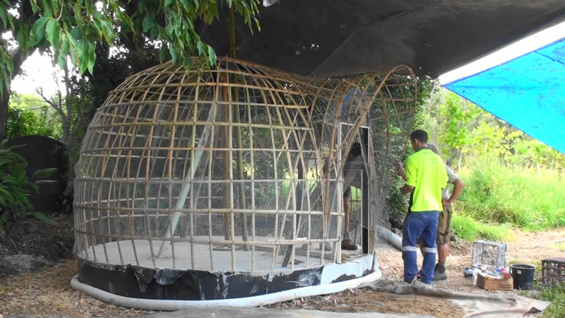 Bamboo Dome Shelter Frame